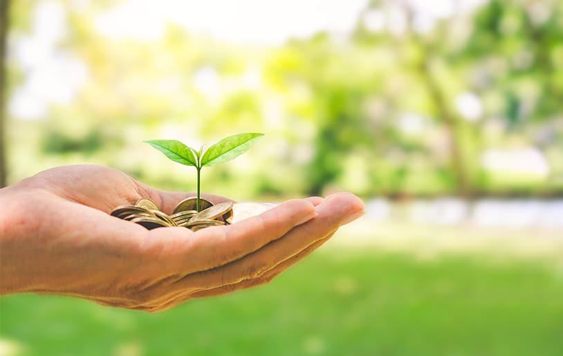 Faire de la relance économique un accélérateur de la transition écologique.