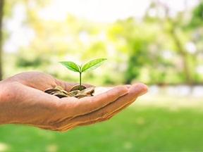 Mettons l'environnement au coeur de la reprise économique
