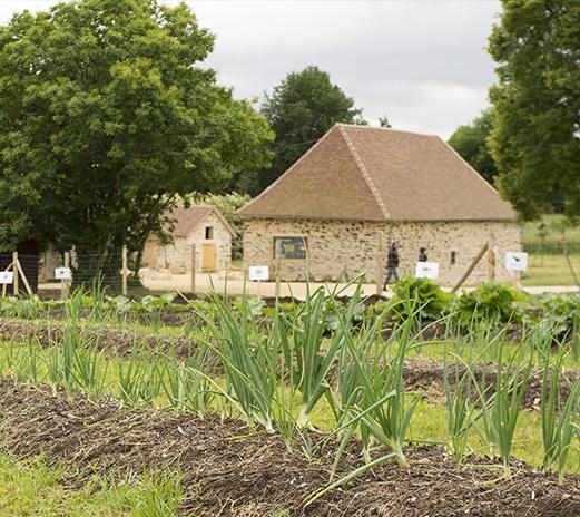 La restauration des sols chez Paprec Group