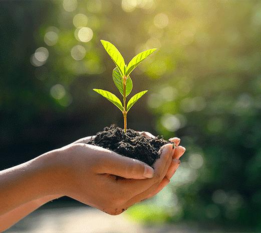 Decouvrez_valorisation_agronomique