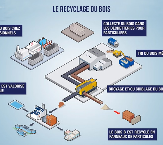 infographie-Recyclage-bois