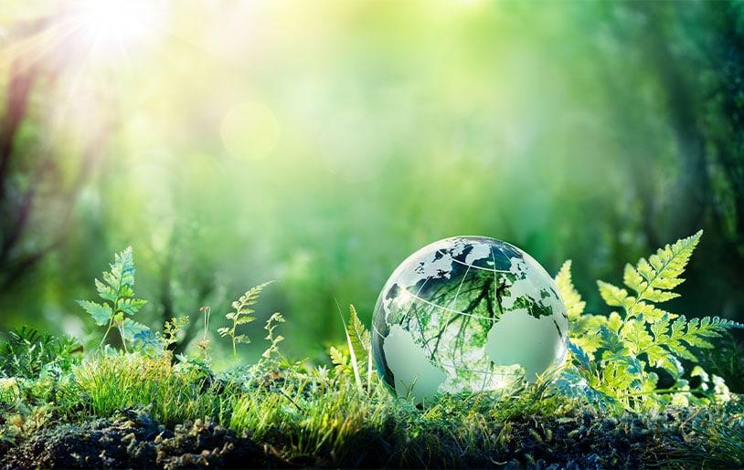 paprec-green-bond-2021